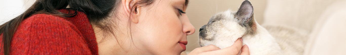 12 veces en las que te sentiste una orgullosa madre de tu gato