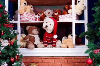 15 perros que llevan dentro el espíritu navideño