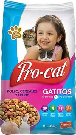 Pro-cat gatitos