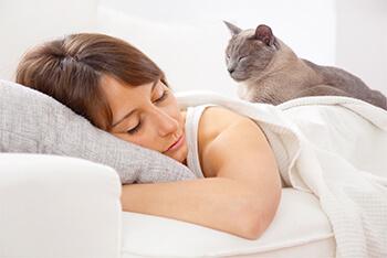 ¿Por qué tu gato duerme sobre ti?