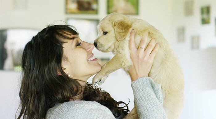 Tips para ayudar a tu perrito a mudar de dientes