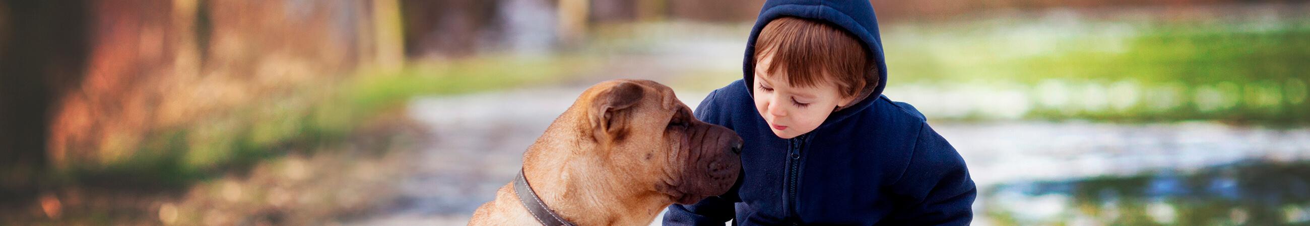 7 formas en las que tener un perrito le hacen bien a tus hijos