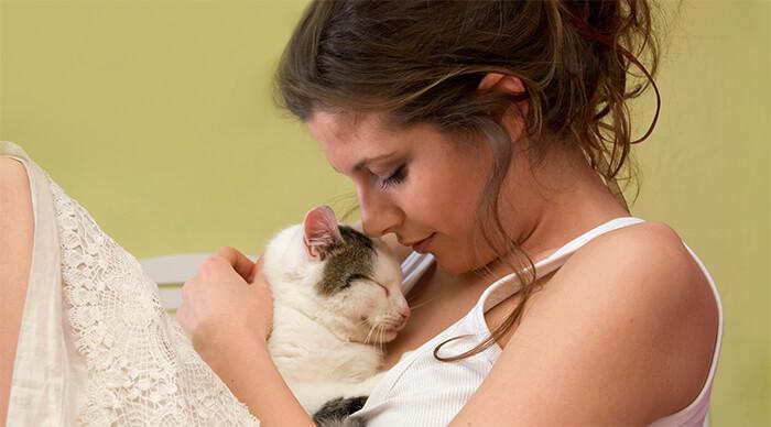 Solo tú conoces la personalidad, gustos y hábitos de tu gato