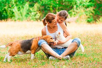 ¿Por qué el amor de nuestras mascotas es tan grande?
