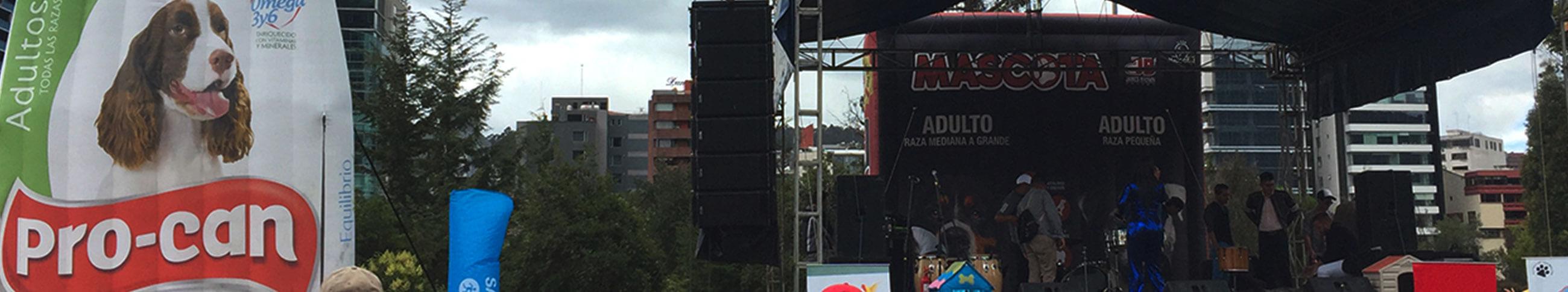 Perritos adpotados ExpoMundo 2019